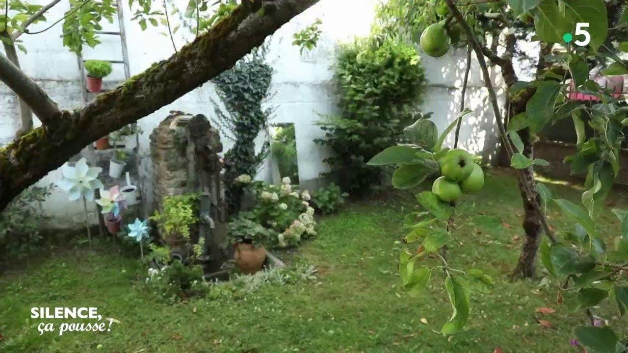 pas de panique chez laure habiller un mur et fleurir un jardin clos silence ca pousse
