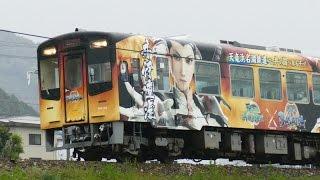 天竜浜名湖鉄道を走る、フルラッピング列車「直虎号」です。 撮影日 : 2...