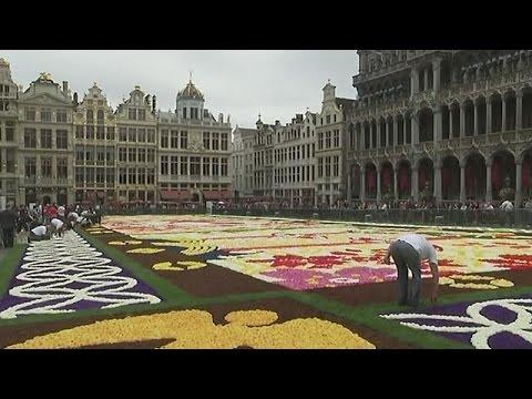 Tappeto Floreale Bruxelles : Tappeto del fiore in grand place di bruxelles fotografia