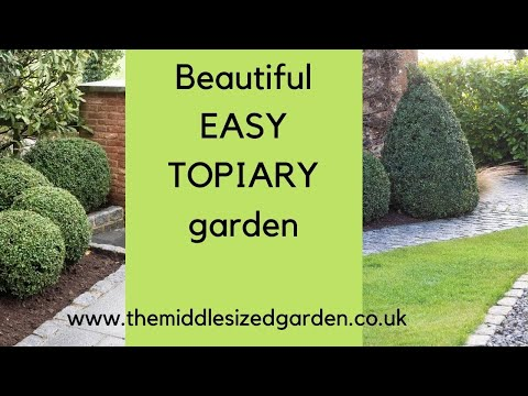 Easy Topiary Shapes For A Dramatic And Beautiful Garden Youtube