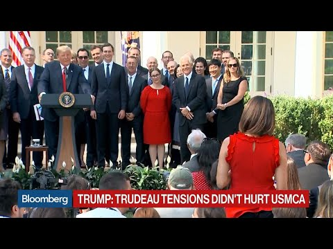 Trump Tells ABC's Cecilia Vega She 'Never' Thinks