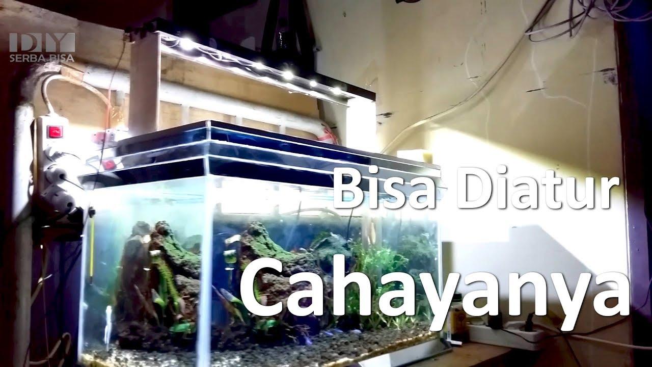 Cara Membuat Lampu Aquarium Lebih Keren Bisa Diatur Cahayanya Making Diy Aquascape Lamp Youtube Membuat lampu aquarium sendiri