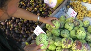 Atemoya, Mangosteen, Rambutan, and Durian for Sale | Video