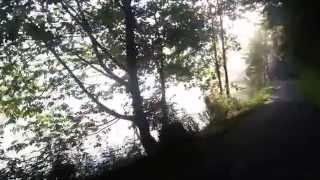Donauradweg von Inzell Richtung Aschach
