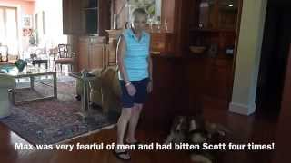 Fear Aggressive Dog Training, Client Testimonial Lowcountry Dog Trainers