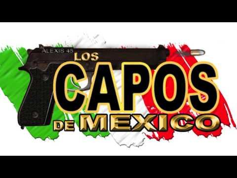 Los Capos De Mexico  El Chile Rosas