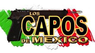 Los Capos De Mexico - El Chile Rosas