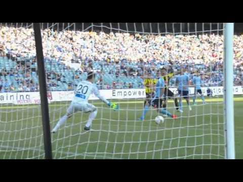 Wellington Phoenix -  All Goals 2014/15