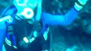 潛水:台東縣綠島深潛、岸潛、船潛與爆肝爆胃團一起去,總共23人+老卓5人!包中巴+坐船一起去玩!總共使用6隻氣瓶!(2007-04-04-三晚~07-六)毓婷的...