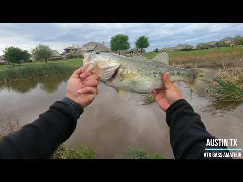 Bass Fishing After Heavy Rain