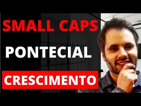 SMALL CAPS [Melhores Estratégias de Investimento]