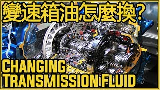 如何動手更換變速箱油?|10 Min Automatic Transmission Fluid Change