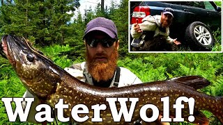 EXPERIMENT: Sport-Fishing for FOOD! | Eating Only Wild for 365 DAYS