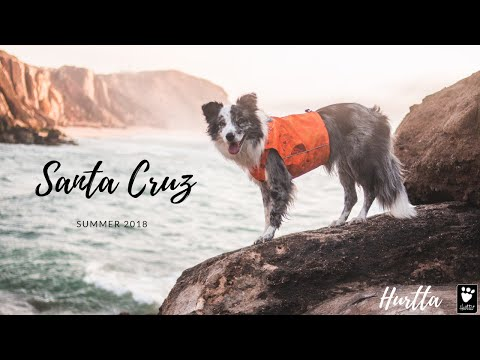 Santa Cruz with Cheza | Summer 2018 | Hurtta