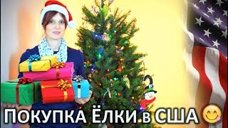видео Елка на Новый год  | Строительный портал