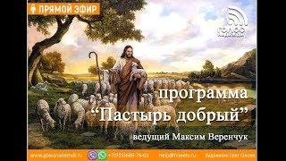 """Природа человека: грехопадение   программа """"Пастырь добрый"""""""