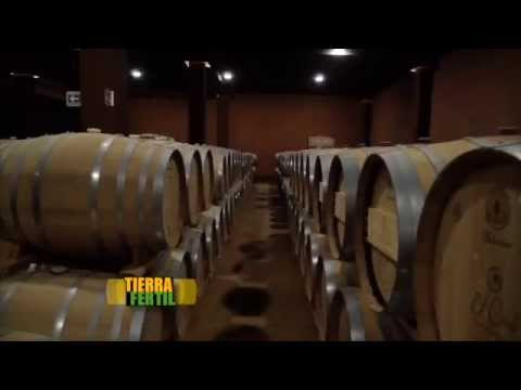 TIERRA FÉRTIL Vinos Baja California (23 de abril de 2015)