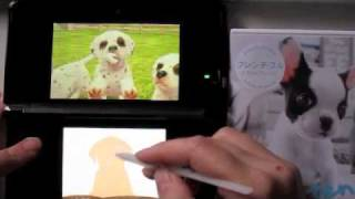 3ds Nintendogs + Cats (dalmatian)