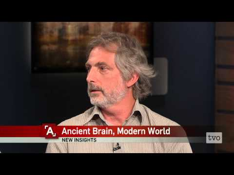 Ancient Brain, Modern World
