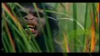 Phim Viet Nam | Nguoi nguyen thuy | Nguoi nguyen thuy