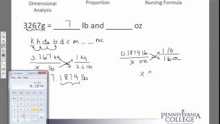 Simple Unit Conversions Grams Lb And Oz