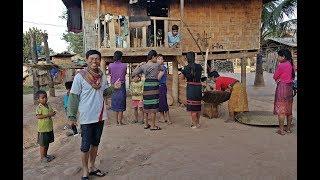 ลุยลาว EP40:เล้าข้าวเสาทำจากเศษระเบิด วิถีชีวิต บ้านเรือน ชนเผ่าตะโอ้ย บ้านอาดอน บรรยากาศแบบโบราณ