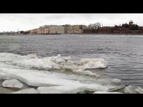В Петербурге объявлен оранжевый уровень опасности погоды