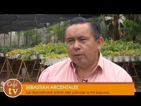 Cafétv Dulcamara contra el cáncer