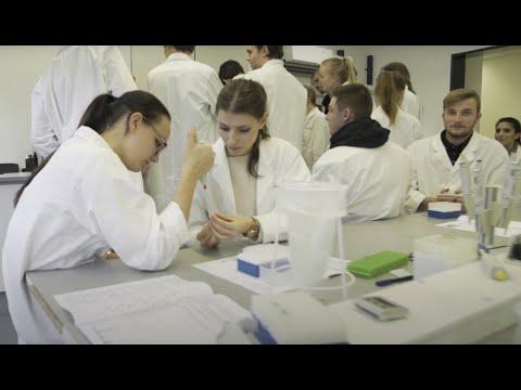 Berlin Medical Academy - Vorsemester Medizin/ premed course - www.premedicine-berlin.de