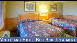 Termite Treatment Oakdale CA 95361 209-456-5665 Termite Control
