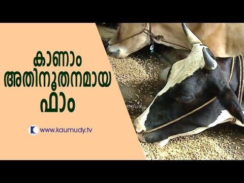 Sasidharan Pillai's All In One Hightech Farm | Haritham Sundaram  | Kaumudy TV