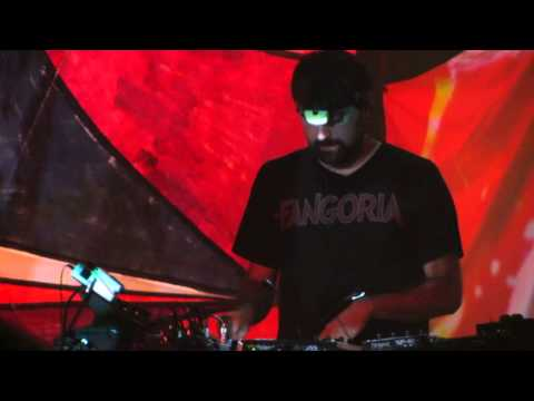 Animal Collective - My Girls - Live @ The Wiltern 10-21-13 in HD