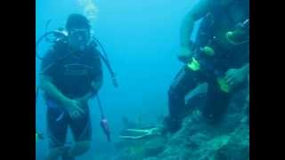 Jagna, Bohol with Drift divers