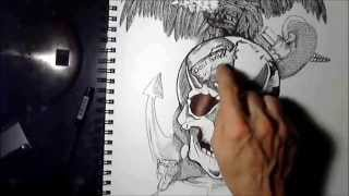 part #2 how to draw a Human Skull