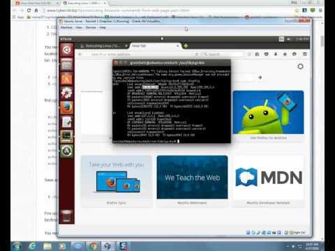 Create first cgi script
