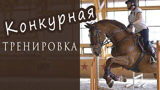 Конкурная тренировка в конном клубе. Работа на рыси и галопе. Конкурный конь.