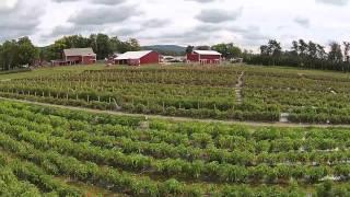 NY FARM BUREAU