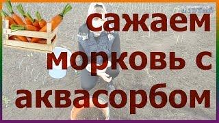 НОВИНКА! Сажаем морковь с аквасорбом и удобряем. Посадка выращивание уход моркови(НОВИНКА! Сажаем морковь с аквасорбом и удобряем. Посадка выращивание уход моркови. Подписывайтесь на мой..., 2016-04-13T18:45:15.000Z)