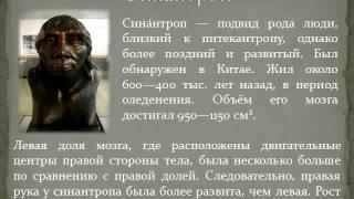 Презентация Древнейшие люди