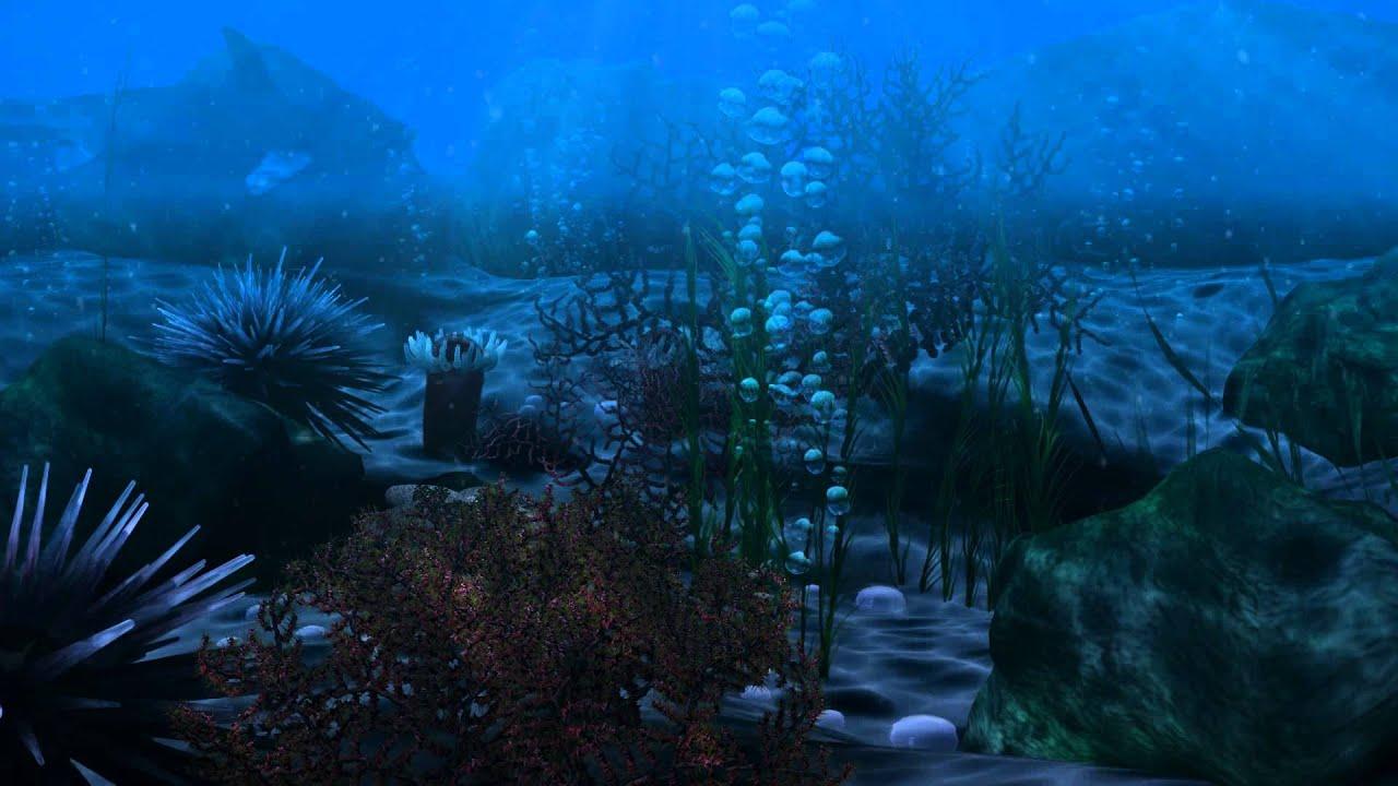 underwater scene - YouTube