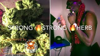 876 Skillz Ft. Freezey Reckless - Strong Strong Herb [Official Music Video HD]