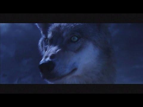 """Wolf Totem"": Annaud in China - cinema"
