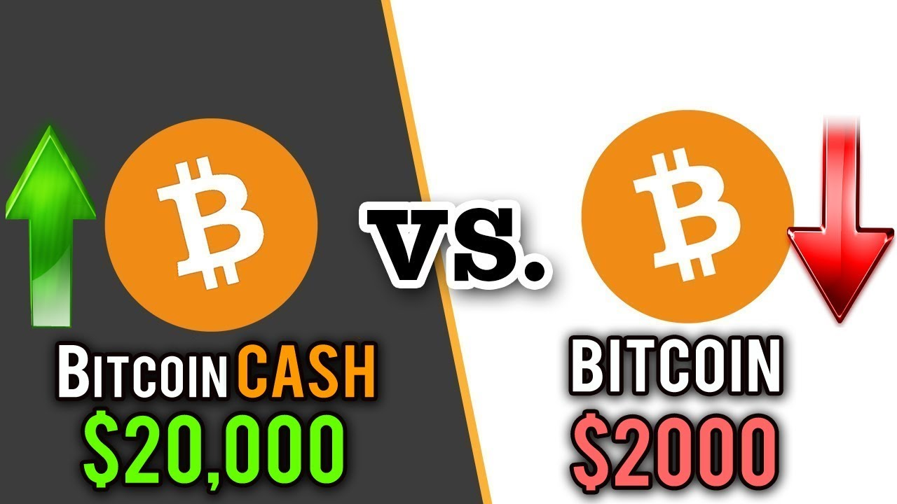 what cryptocurrency will replace bitcoin