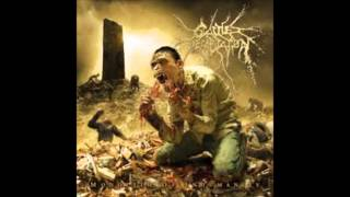 CATTLE DECAPITATION Projectile Ovulation