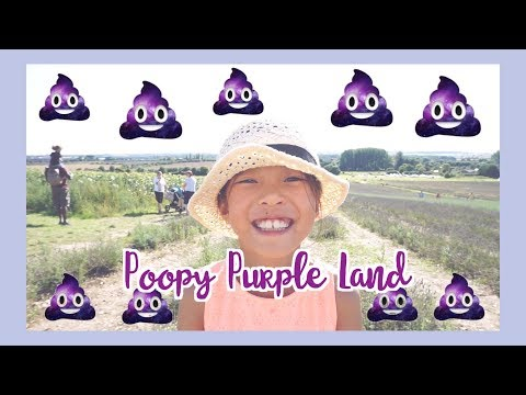 Vlog - British Lavender Fields 💜