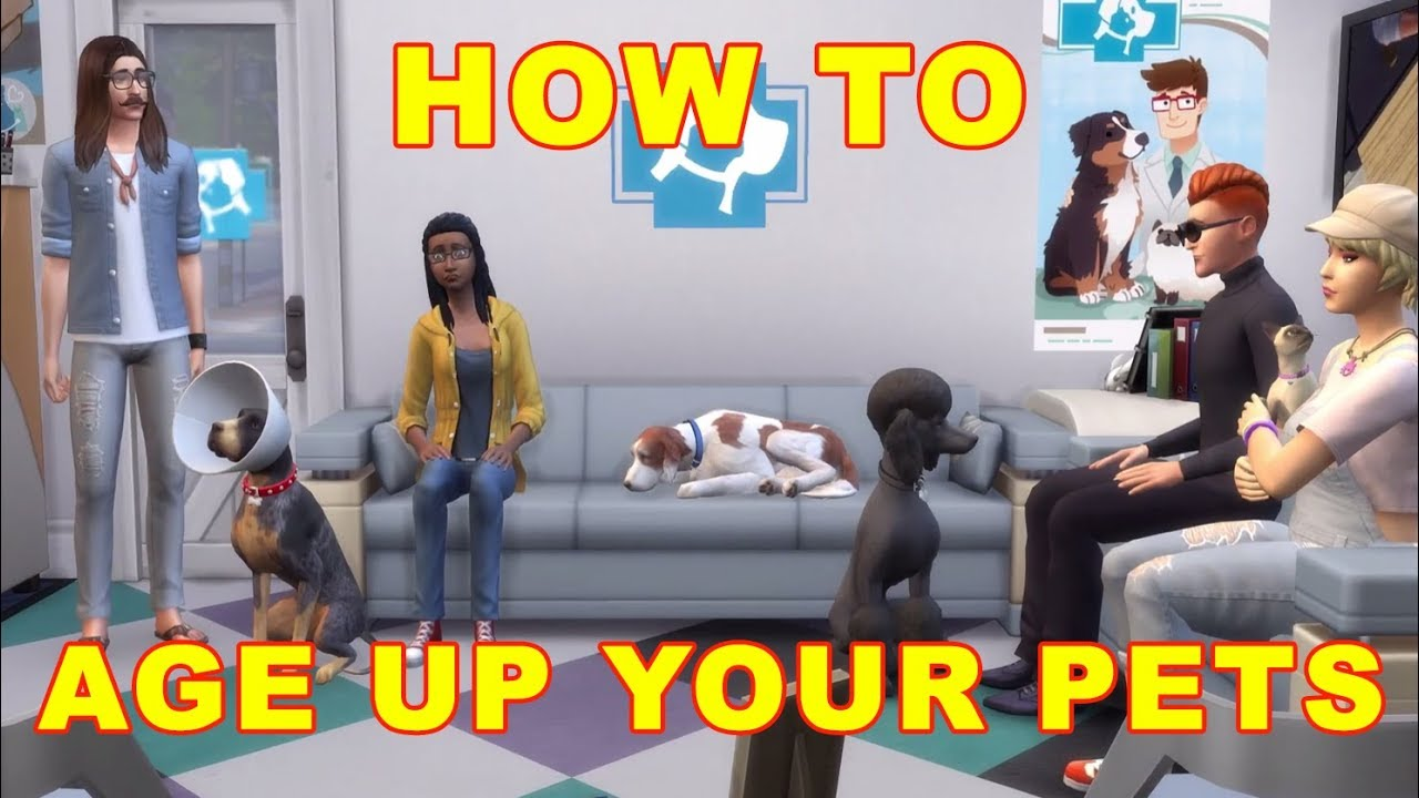 The Sims  Age Up Dogs And Cats