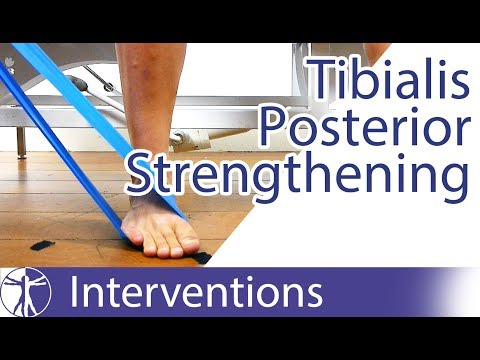 tibialis-posterior-strengthening-|-flat-feet-exercise