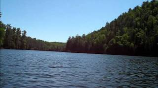 Canoe route from Lac Vert to Lac Bagnole time lapse: A forest [tree mix] - The Cure