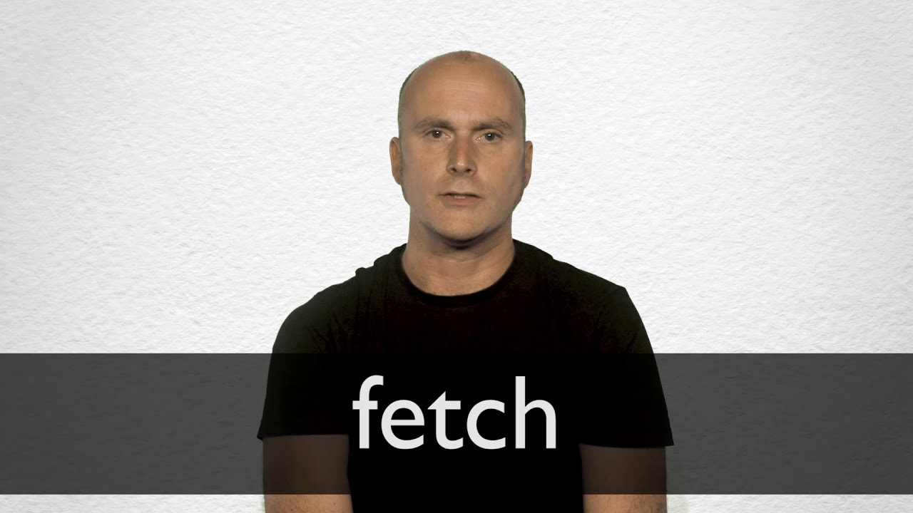 Fetch definition and meaning | Collins English Dictionary