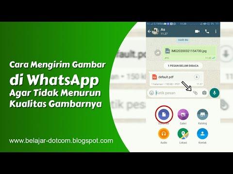cara-mengirim-gambar-di-whatsapp-agar-tidak-menurun-kualitasnya-atau-pecah/blur